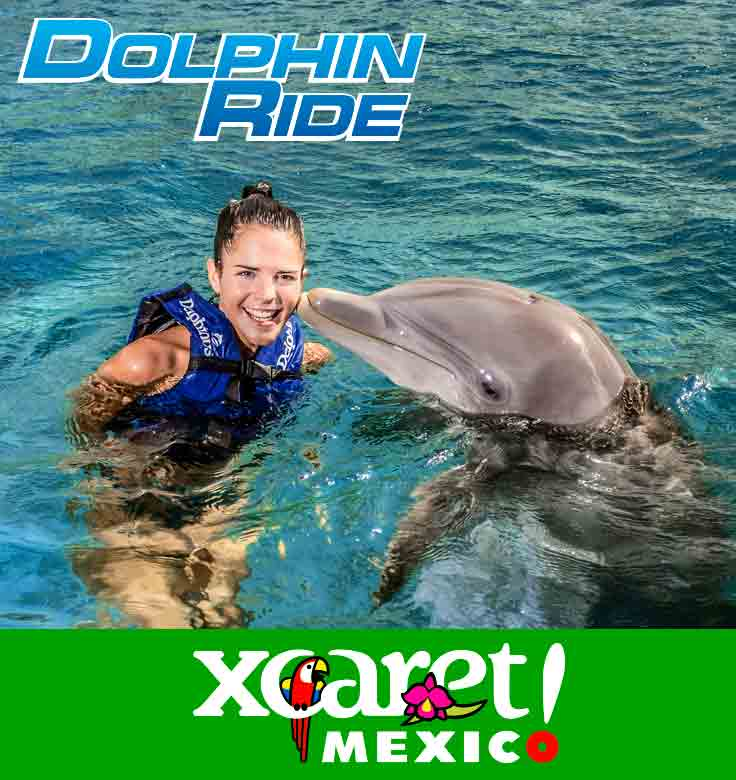 Dolphin Ride Xcaret